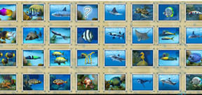 Divemaster game released Photo