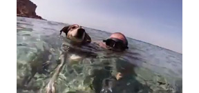 A freediving underwater video with a dog Photo