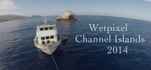 Video: Wetpixel Channel Islands 2014 by Drew Kinsman Photo