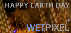 Happy Earth Day 2015 Photo
