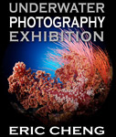 Exhibition in San Diego: Eric Cheng's underwater photography Photo