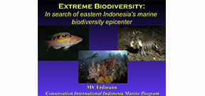 Video: Mark Erdman on species diversity Photo