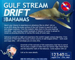 Bahamas exploratory drift expedition, August 21-27 Photo