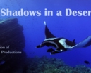 Film: Shadows in a Desert Sea by Howard Hall Photo