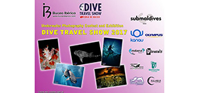 Call for entries: Dive Travel Show photo contest Photo