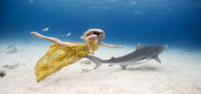The underwater project by Jeremy Ferris Photo