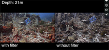 Video: The effects of filters on color underwater by Daniel Keller Photo