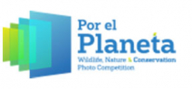 Results of Por el Planeta contest announced Photo