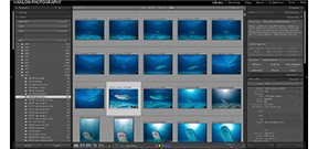 Adobe updates Lightroom to 6.4/CC 2015.4 Photo