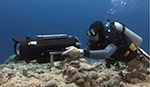 RED One Digital Cinema Camera underwater housing appraisal Photo