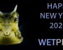 Wishing the Wetpixel Community a very Happy New Year Photo