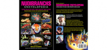 2nd edition of Neville Coleman's Nudibranch Encylopedia available to pre-order Photo