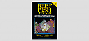 Second Edition of Reef Fish Behavior announced Photo