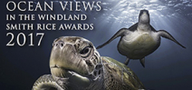 Ocean Views is now part of the Windland Awards Photo