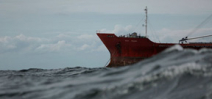 United Nations begins talks to protect open ocean fish Photo
