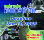 OWU 2009 and DEEP 2009 DEADLINES JAN 15th! Photo