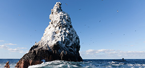 Mexico expands Revillagigedos Marine Park Photo