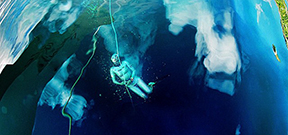 Image: Freediver beneath the surface Photo