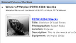 Wetpixel Picture of the Week now has an RSS feed Photo