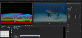 New features in Premiere Pro 2015.3 Photo