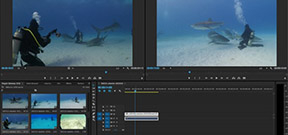 Adobe offers preview of new video editing features Photo