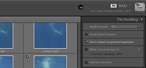 Lightroom Coffee Break: View photos faster with 1:1 preview Photo