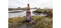 Rogue ales releases Wasted Sea Star Purple Pale Ale Photo