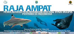 Raja Ampat shark sanctuary becomes law Photo