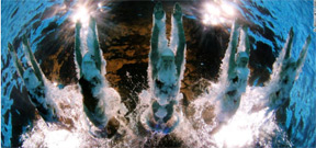 The olympic underwater photographers are robots Photo
