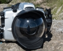 Review: SEACAM Silver housing for D500 Photo