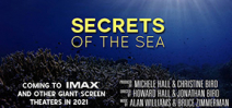 Howard Hall and Jonathan Bird to release IMAX film Photo