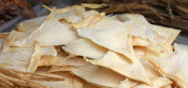 China's largest airline bans shark fin cargo Photo
