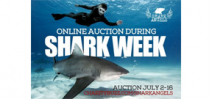 Shark Angels auction kicks off July 2 Photo