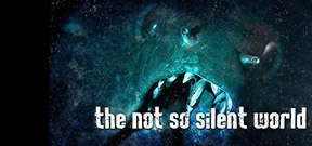 Video: The Not So Silent World by Evan Sherman Photo