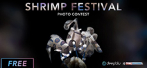 Call for entries: Scubashooters Shrimp Festival Photo