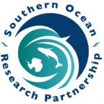 New study uses non-lethal whale research methods Photo