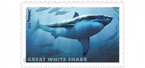 USPS announces Sharks Forever Stamps Photo