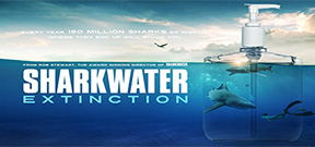 Sharkwater Extinction released Photo