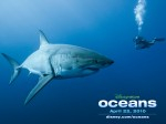 Disneynature Oceans for release on DVD, Blu-Ray and download Photo