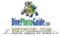 Wetpixel.com/DivePhotoGuide.com International Photo Competition Photo
