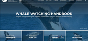 IWC and CMS Launch Online Whale Watching Handbook Photo