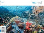 Wetpixel ships issue #2 of Wetpixel Quarterly Photo