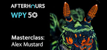 Alex Mustard offers underwater photography masterclass Photo