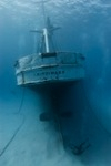 The Kittiwake: Cayman's newest wreck and artificial reef Photo