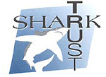 Shark Trust 'Sharks In Focus' 2007 Photo Competition Photo