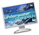 Online underwater show TheUnderwaterChannel.tv 2008 launch Photo