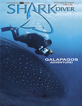 Tauchen and Shark Diver Digital Covers Photo