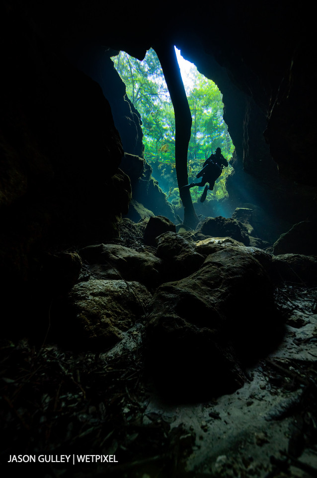 Tree leaves are visible through the clear water of a sinkhole in the Floridan aquifer. Visibility in Florida's caves often exceeds 30 meters.