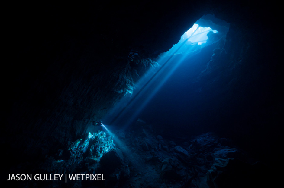 Massive cave springs like this one pour freshwater into estuaries along Florida's Gulf Coast. These springs support provide habitat for fish, birds, and manatees and create epic underground playgrounds.
