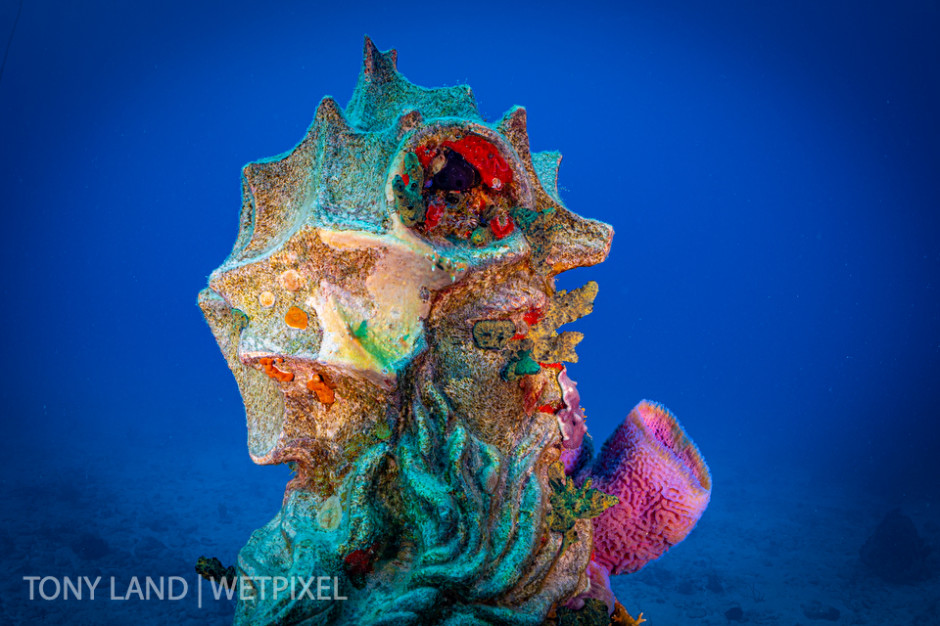 Profile of the Guardian of the Reef statue, Divetech's house reef in West Bay, Grand Cayman.